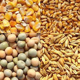 Materias primas Agricultura